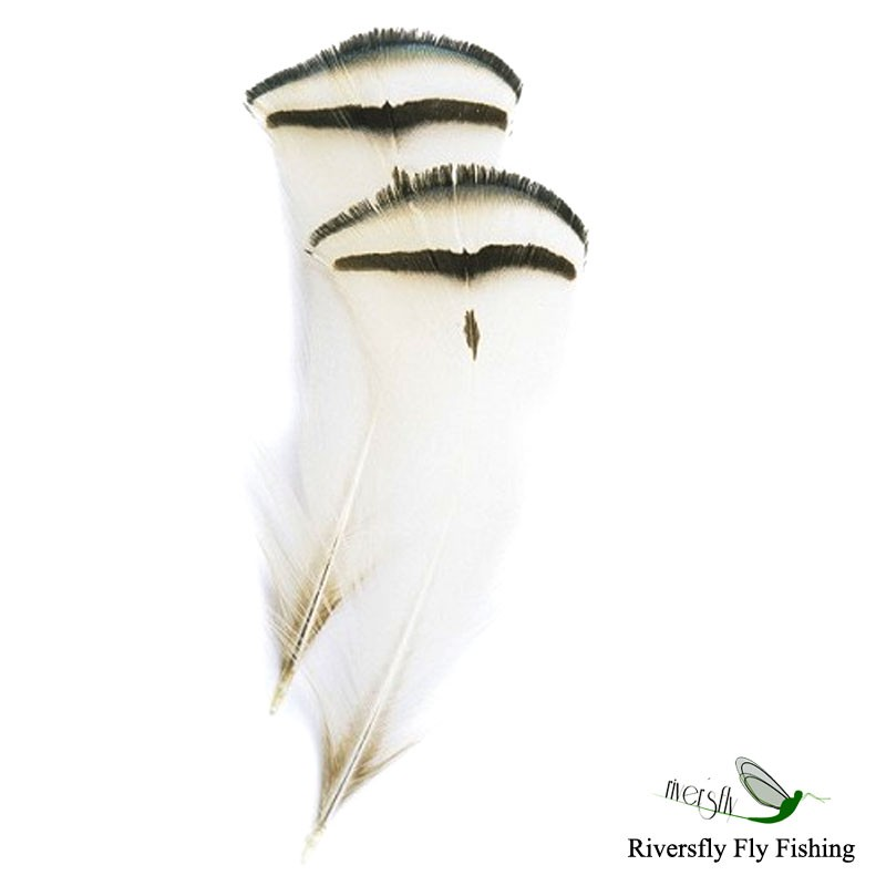 Amherst pheasant tippet feathers for Tippet fly fishing