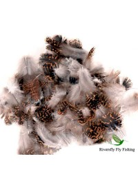 English Grouse Feathers Soft Hackle Hareline