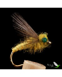 Olive wool wiht Eyes Wet Fly