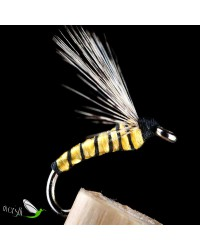 Wasp Wet Fly