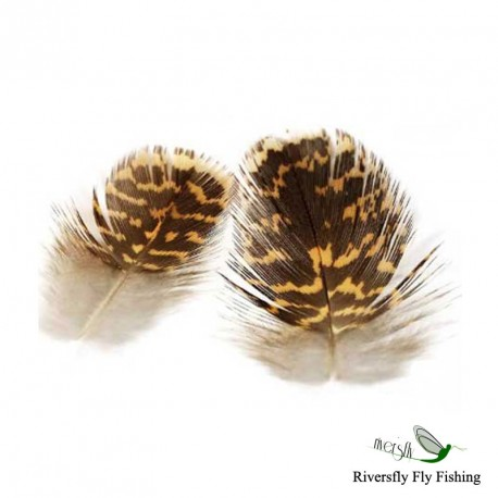 English Grouse Feathers Soft Hackle Veniard