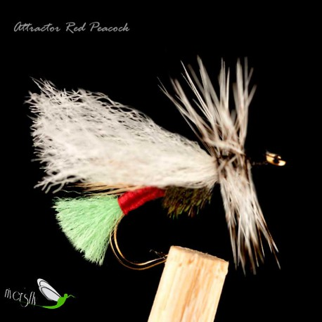 Attractor Red Peacock