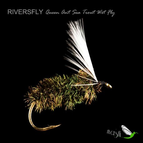 White-winged Queen Ant Sea Trout Wet Fly