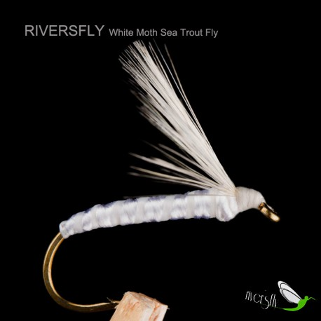 White Moth Sea Trout Fly