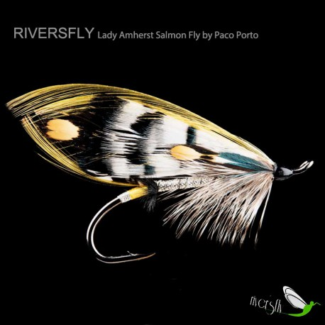 Lady Amherst Salmon Fly by Paco Porto