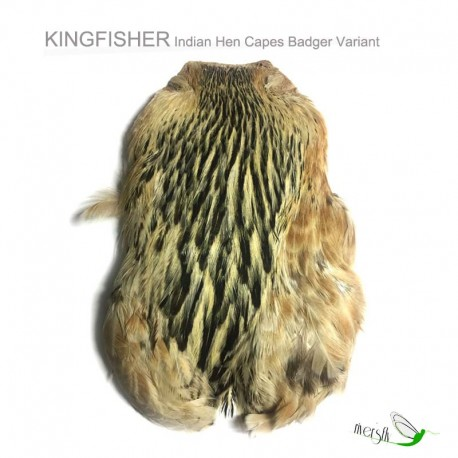 Indian Hen Capes by Kingfisher